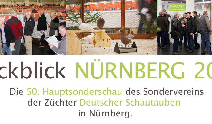 Rueckblick Nuernberg